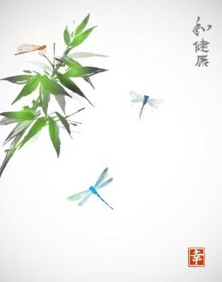 Posters Branche de bambou et trois libellules