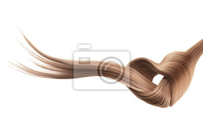 Posters Brown hair knot in shape of heart, isolated on white background