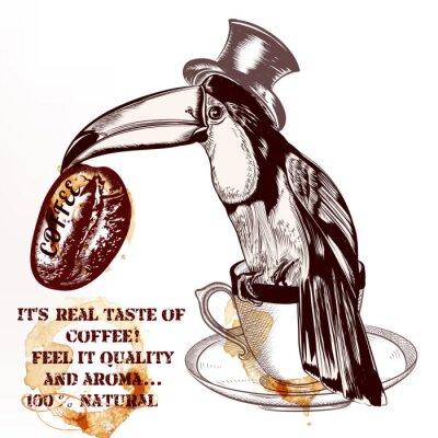 Posters Café, vecteur, fond, ou, affiche, à, main, dessiné, toucan, oiseau, h