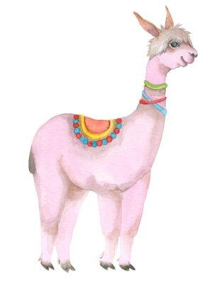 Posters Cartoon watercolor lama portrait.