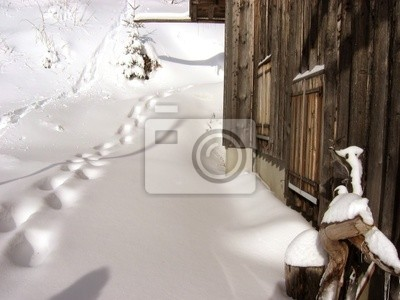 Chalet montagnard - Sports d'hiver