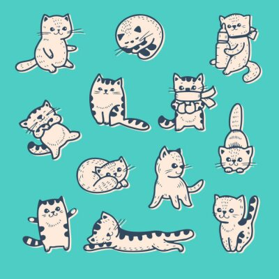 Posters Chatons