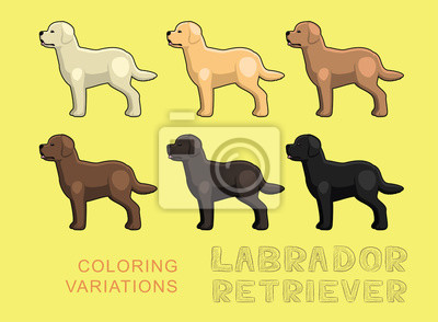 Posters Chien Labrador Retriever Illustration Vectorielle Variations