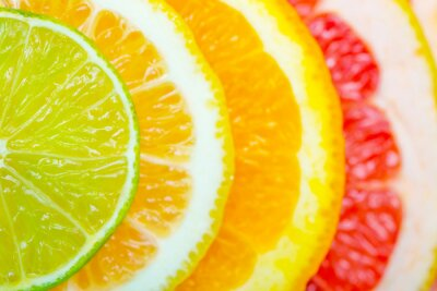 Posters citrus background