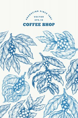 Posters Coffee tree branch vector illustration. Vintage coffee background. Hand drawn engraved style illustration.