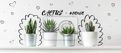 Collection de divers cactus et plantes succulentes dans différents pots. Concept de plantes de maison de cactus en pot inhabituelle.