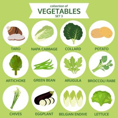 Posters Collection de légumes, nourriture vecteur illustration, icône ensemble thr