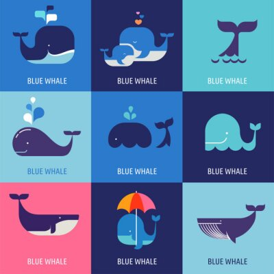 Posters Collection of vector whale icons