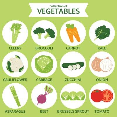 Posters collections de légumes, vecteur alimentaire Illustration, icône fixés sur