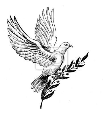 Posters Colombe Volante Blanche Avec Une Branche Dolivier