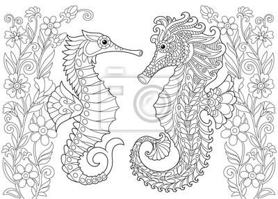 Posters Coloriage Du Hippocampe Dessin Déquisse à Main Levée Pour Un