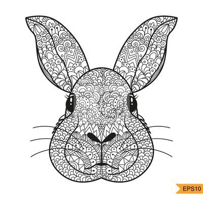 Coloriage Zentangle Tête De Lapin Pour Lantistress Adulte Affiches