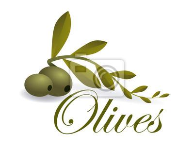 conception des Oliviers