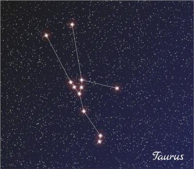 Posters constellation du Taureau