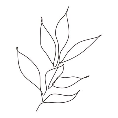 Posters Continuous line drawing of leaves plant vector. Illustration of botanical hand drawn minimalism artwork.