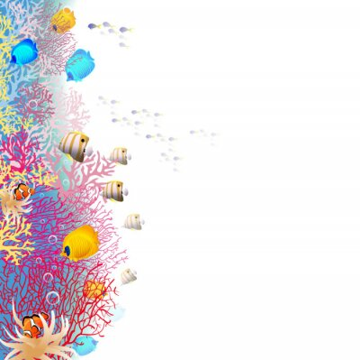 Posters coralreef