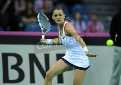 Posters Cracovie, Pologne - 7 février 2015: Agnieszka Radwanska lors de la Fed Cup de tennis tasse en Pologne