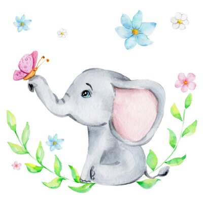 Posters Cute little elephant with pink butterfly and flowers; watercolor hand draw illustration; with white isolated background
