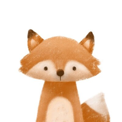 Posters Cute little fox. Kids print or poster. Hand drawn illustration.