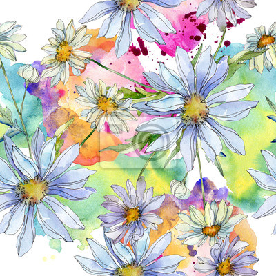 Posters Daisy floral botanical flower. Watercolor background illustration set. Seamless background pattern.