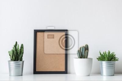 Décoration de la chambre moderne. Divers cactus et plantes succulentes dans différents pots. Maquette avec un cadre noir.