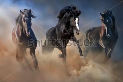 Posters Des étalons noirs courent au galop dans la poussière du désert contre un ciel dramatique