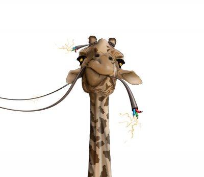 Posters Dessin d'une girafe