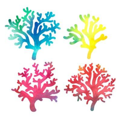 Posters dessinés à la main aquarelle corail décorative
