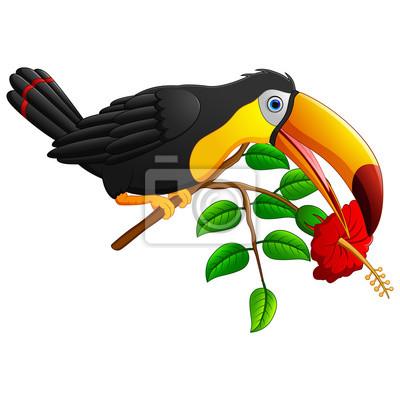 Drole Toucan Oiseau Dessin Anime Branche Affiches Murales