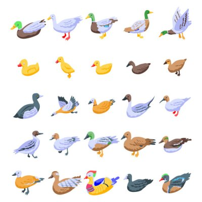 Posters Duck icons set. Isometric set of duck vector icons for web design isolated on white background