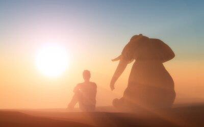 Posters Elephant et l'homme