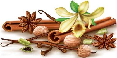 Posters Épices aromatiques sèches