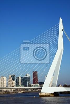 Erasmus pont