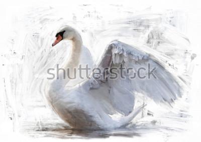Posters esquisse de cygne blanc