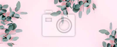 Posters Eucalyptus leaves and branches on pastel pink background. Eucalyptus branches pattern. Flat lay, top view, copy space, banner