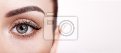 Posters Female Eye with Extreme Long False Eyelashes. Eyelash Extensions. Makeup, Cosmetics, Beauty. Close up, Macro