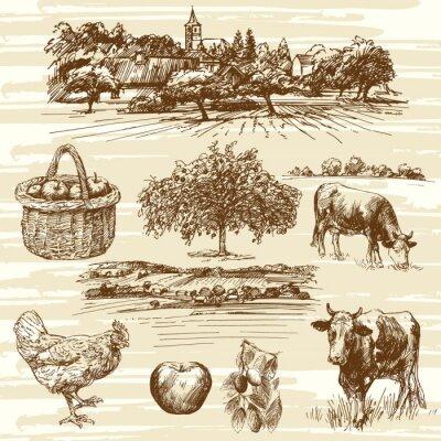Posters Ferme, récolte, rural, paysage, main, dessiné, ensemble