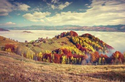 Posters Foggy matin d'automne dans les montagnes des Carpates.