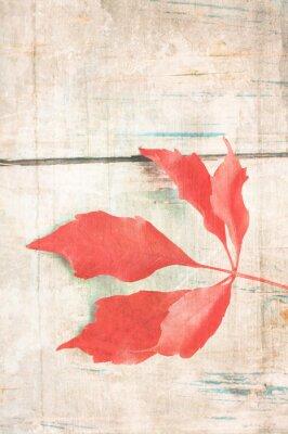 Posters Fond sale avec des feuilles rouges