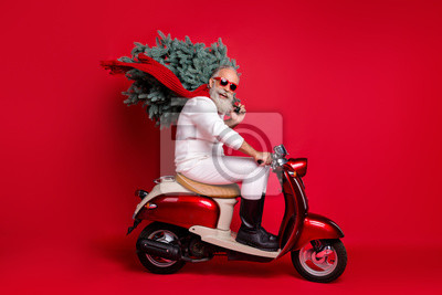 Posters Full size profile side photo of cheerful pensioner on motorcycle carry fir tree travel hurry to christmastime wear sweater pants isolated over red background