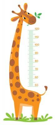 Posters Giraffe mètre mur