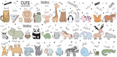 Posters Grand dessin animé de vecteur d'animaux doodle mignon