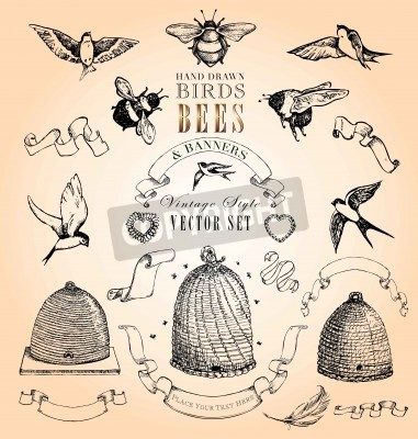 Posters Hand Drawn Birds, Bees and Banners Vintage Style Vector Set