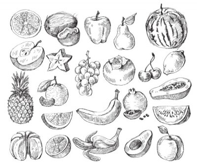 Posters hand drawn fruit