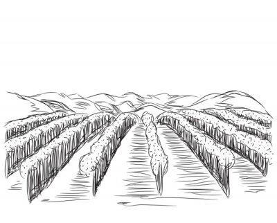 Posters Hand Drawn paysage avec des champs.