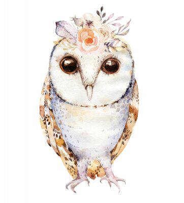 Posters Hibou aquarelle avec des fleurs et des plumes. Illustration de chouettes isolé dessinés à la main avec des oiseaux dans le style boho. Conception d'affiche imprimable de pépinière.