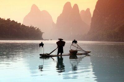 Posters Homme pêche chinois avec les cormorans oiseaux