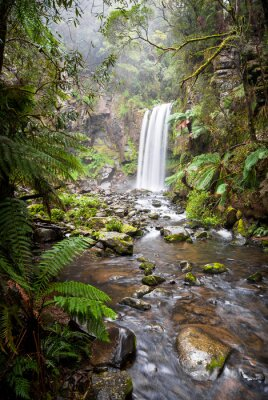 Posters Hopetoun Falls, a secluded waterfall in the Otway Ranges, Australia
