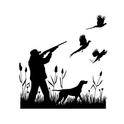 Posters Hunting for pheasants with a dog. A man shoots a shotgun at flying birds while standing in the grass with reeds. Vector silhouette.