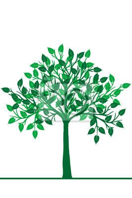 Illustration d'un arbre vert